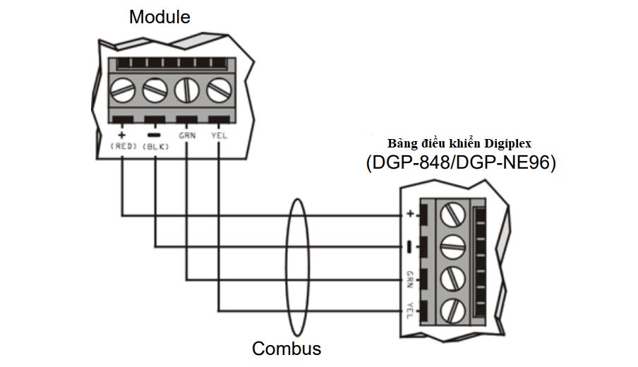 Hình 1 - Kết nối Combus